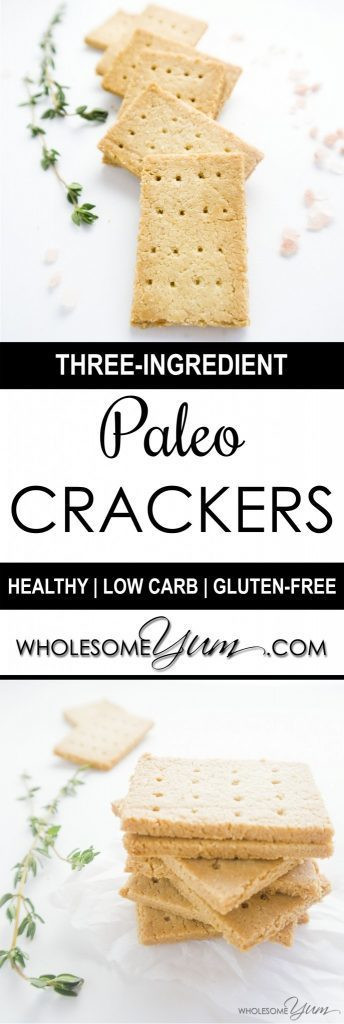 3 Ingredient Low Carb Recipes  3 Ingre nt Paleo Crackers Low Carb Gluten free