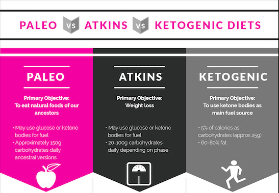 Atkins Vs Keto Diet  Paleo vs Atkins vs Ketogenic Diet Fact vs Fitness
