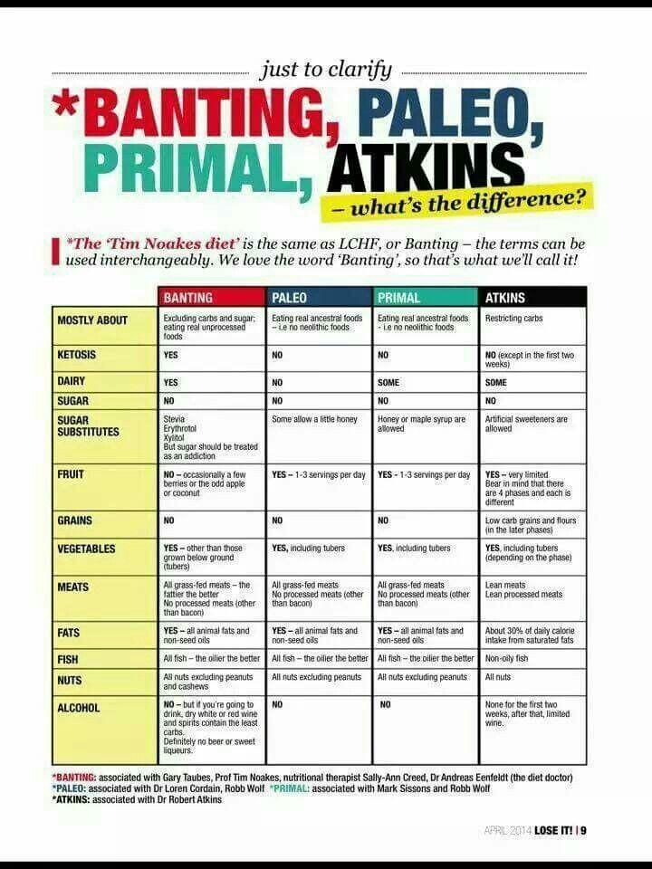 Atkins Vs Keto Diet  Differences Paleo vs Atkins low carb recipes