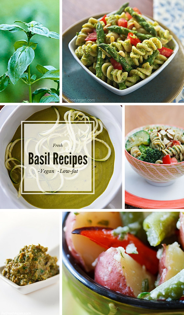Basil Recipes Vegan  Pesto Primavera Pasta and Other Fresh Basil Recipes