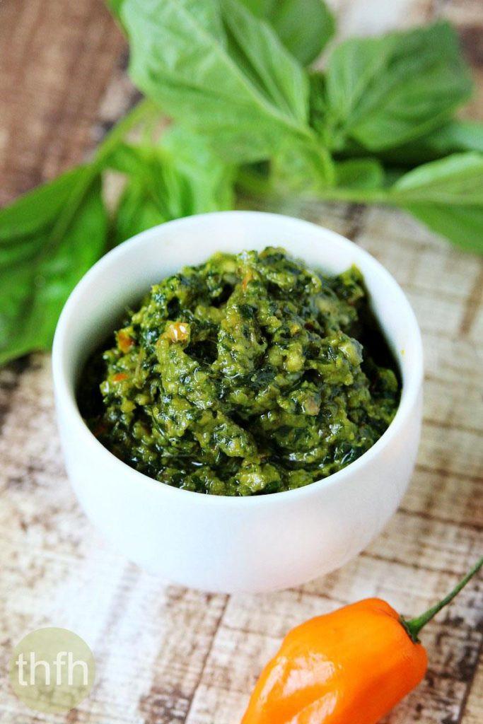 Basil Recipes Vegan  Vegan Habanero and Basil Pesto