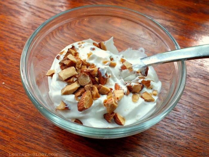 """Can You Eat Yogurt On Keto Diet  Low carb """"Yogurt"""" and Why You Want to Eat It lowcarb ology"""