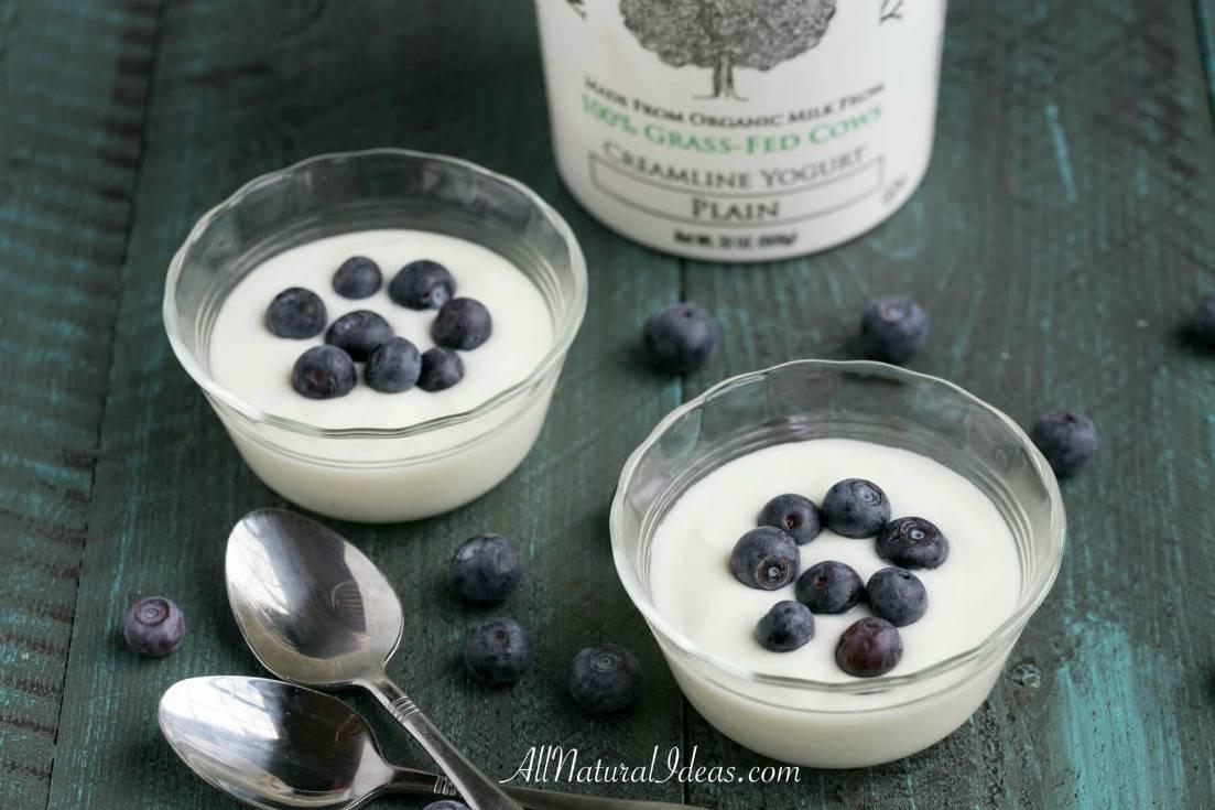 Can You Eat Yogurt On Keto Diet  Low Carb Yogurt Options for a Keto Diet