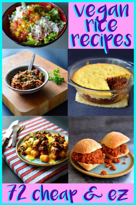 Cheap Vegan Recipes For College Students  72 Cheap Easy Vegan Meals For College & Poor People – Rich