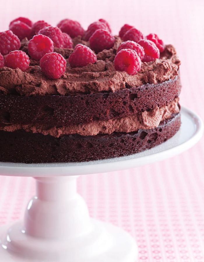 Dairy Free Birthday Cake Recipe  Gluten Free Chocolate Birthday Cake Recipe