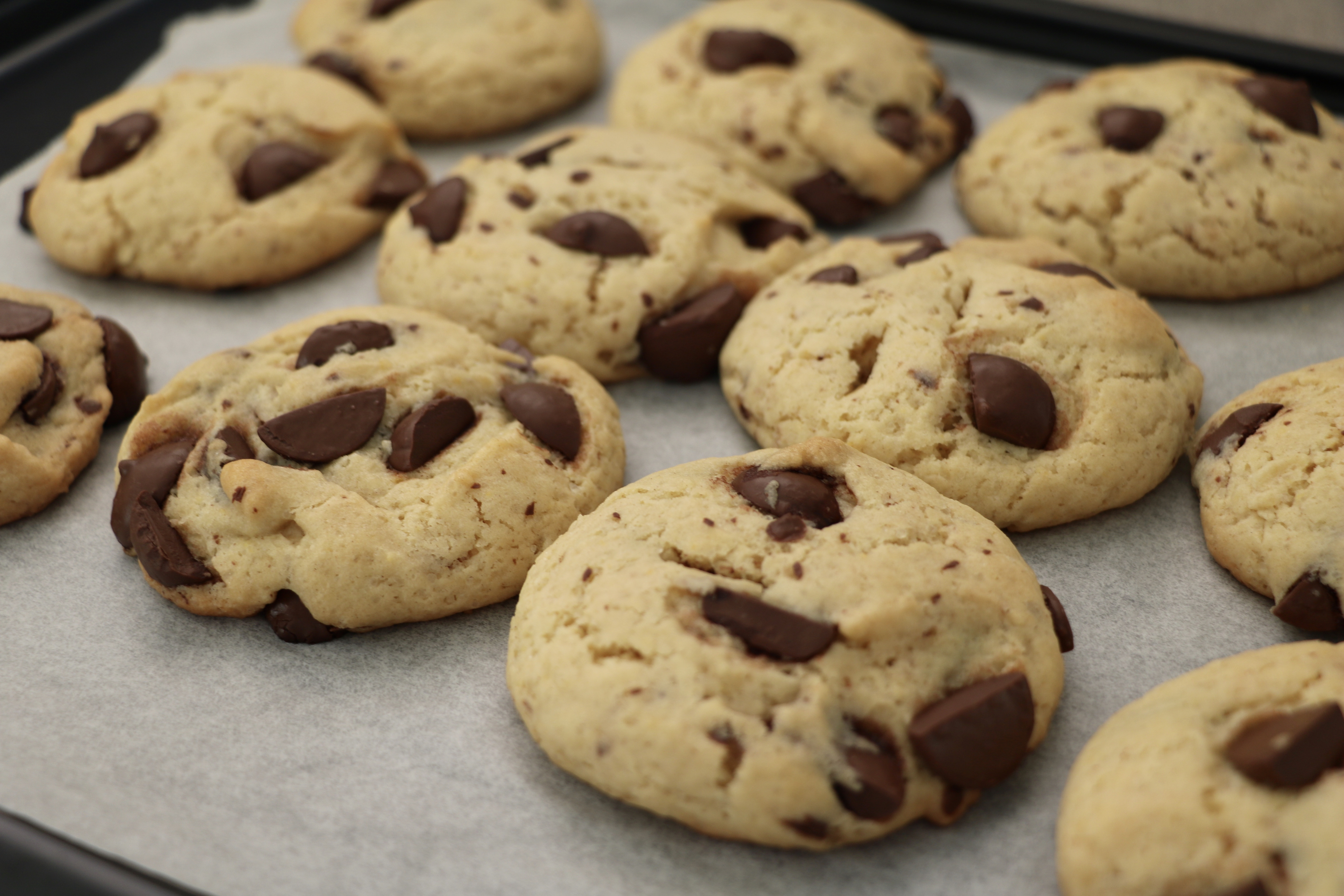 Dairy Free Chocolate Chip Cookies  Dairy Free Chocolate Chip Cookie Recipe The Lilly Mint Blog