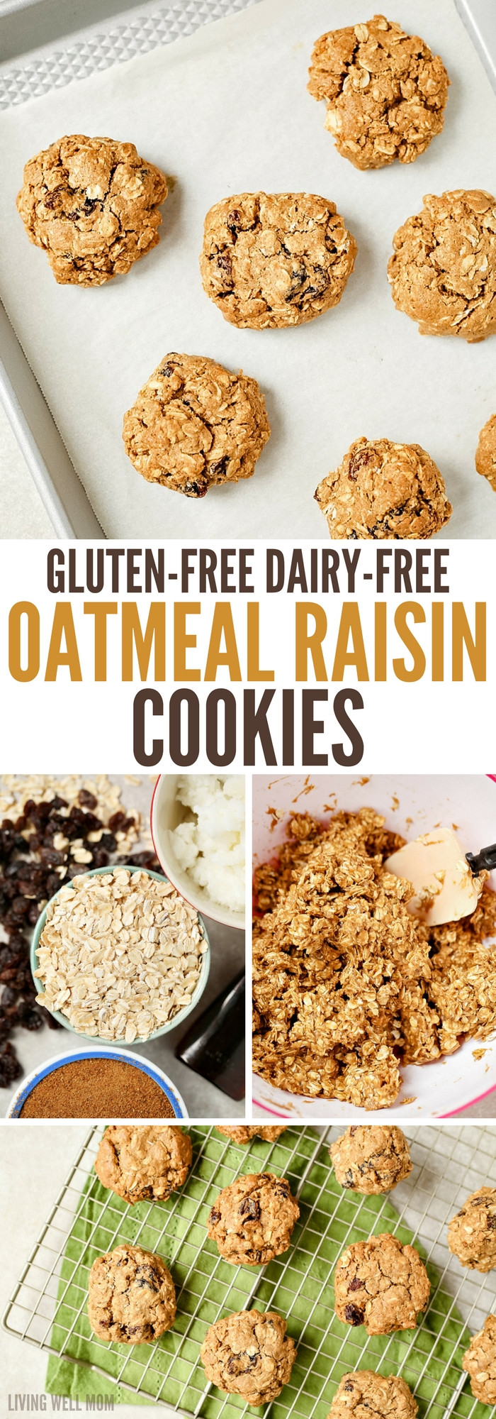 Dairy Free Cookie Recipes  Gluten Free Dairy Free Oatmeal Raisin Cookies