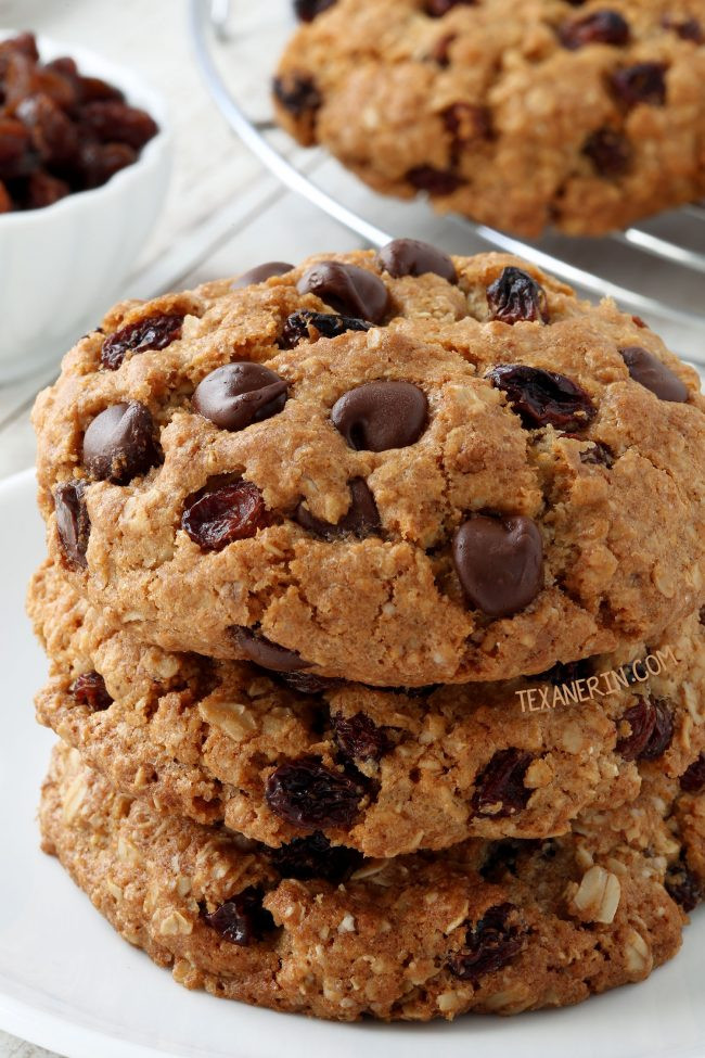 Dairy Free Cookie Recipes  gluten free oatmeal raisin cookies