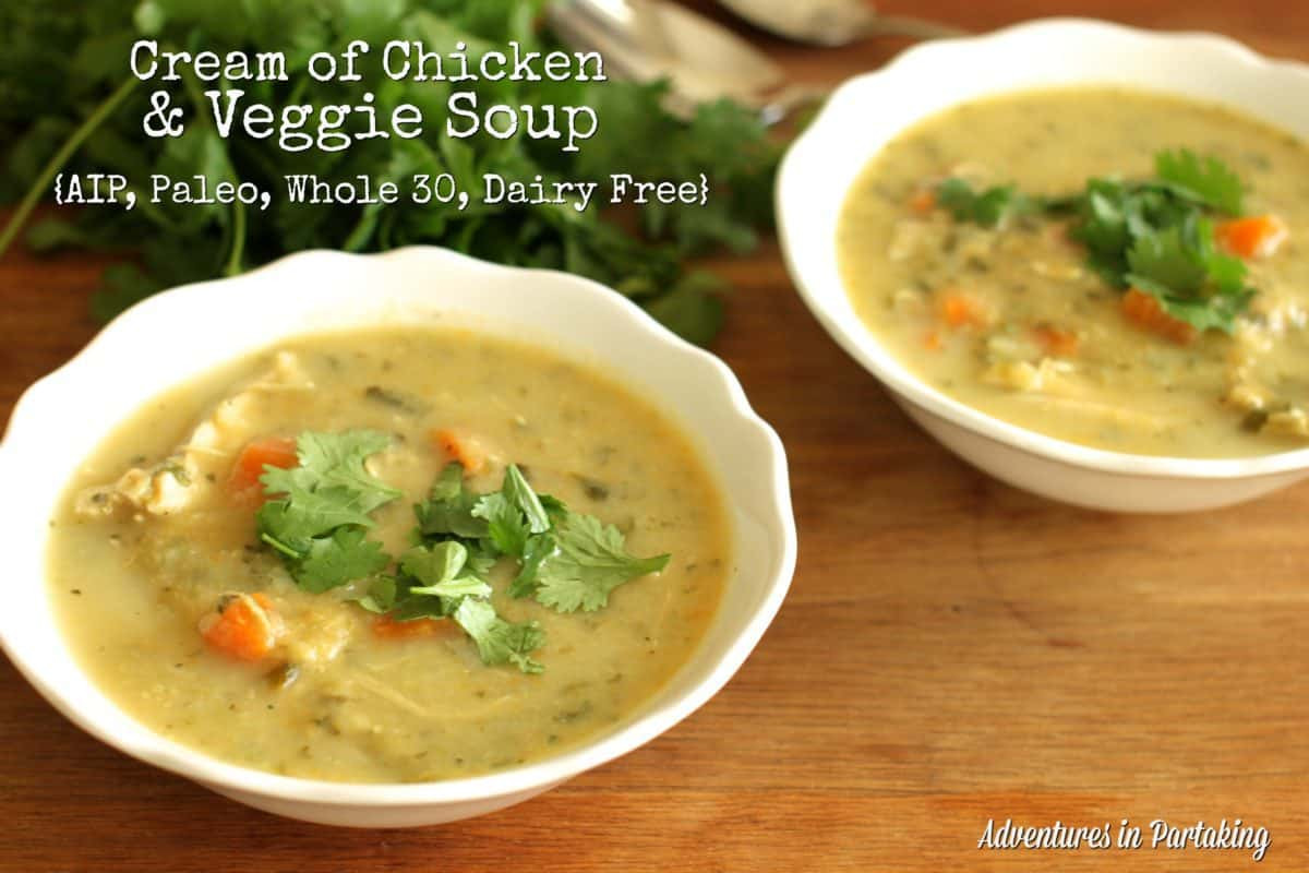 Dairy Free Cream Of Chicken Soup  Cream of Chicken and Veggie Soup AIP Paleo Whole 30