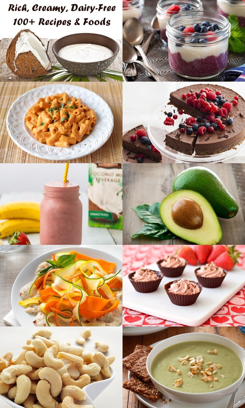 Dairy Free Diet Recipes  100 Recipes and Tips to Satisfy Creamy Dairy Free Cravings