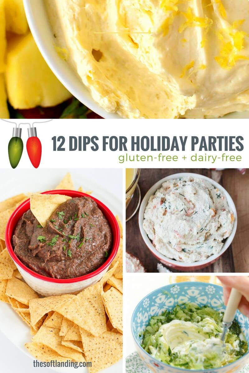 Dairy Free Dip Recipes  12 Delicious Dairy free Dip Recipes for Holiday Parties