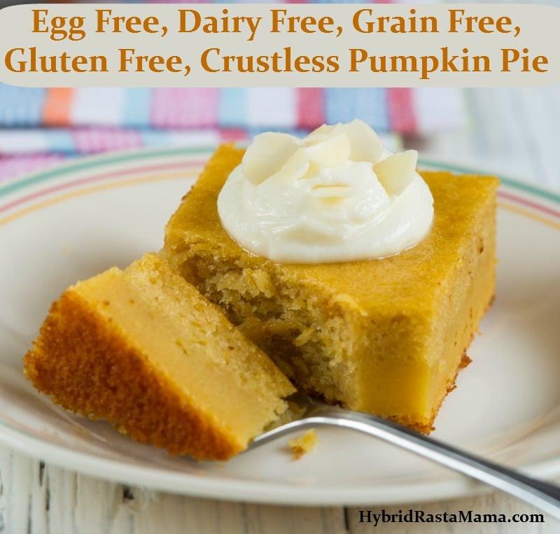 Dairy Free Egg Free Pumpkin Pie  Egg Free Dairy Free Grain Free Gluten Free Crustless