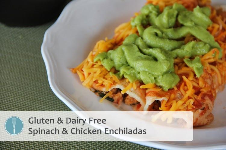 Dairy Free Enchiladas  Gluten & Dairy Free Spinach and Chicken Enchiladas