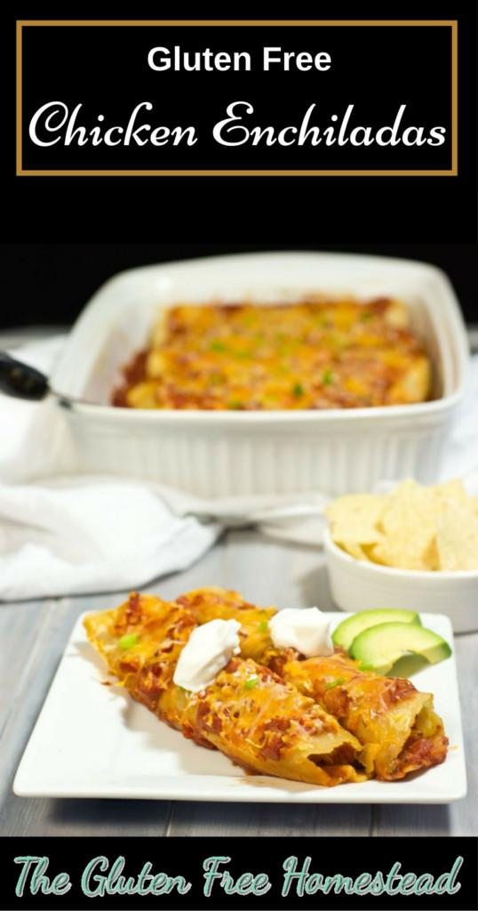 Dairy Free Enchiladas  Gluten Free Chicken Enchiladas