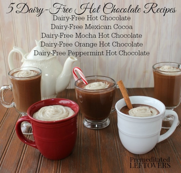 Dairy Free Hot Chocolate  Dairy Free Hot Chocolate Recipe with 4 Delicious Variations
