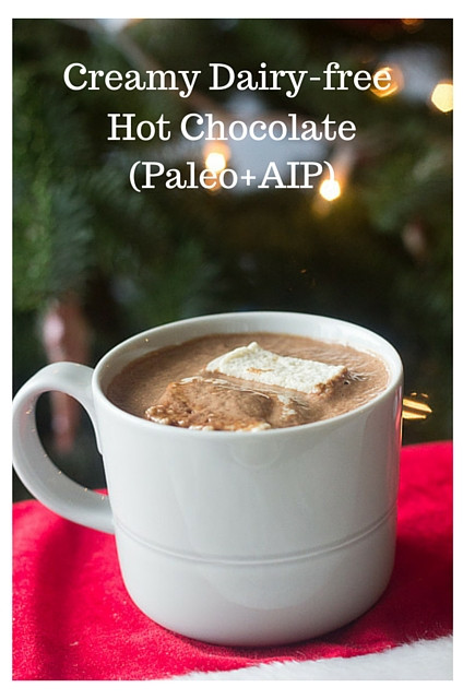 Dairy Free Hot Chocolate  Creamy Dairy free Hot Chocolate Paleo with AIP option