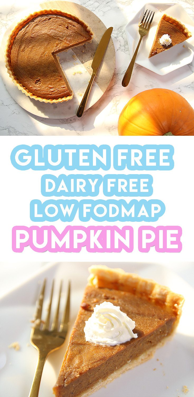 Dairy Free Pumpkin Recipes  Gluten Free Pumpkin Pie Recipe dairy free and low FODMAP
