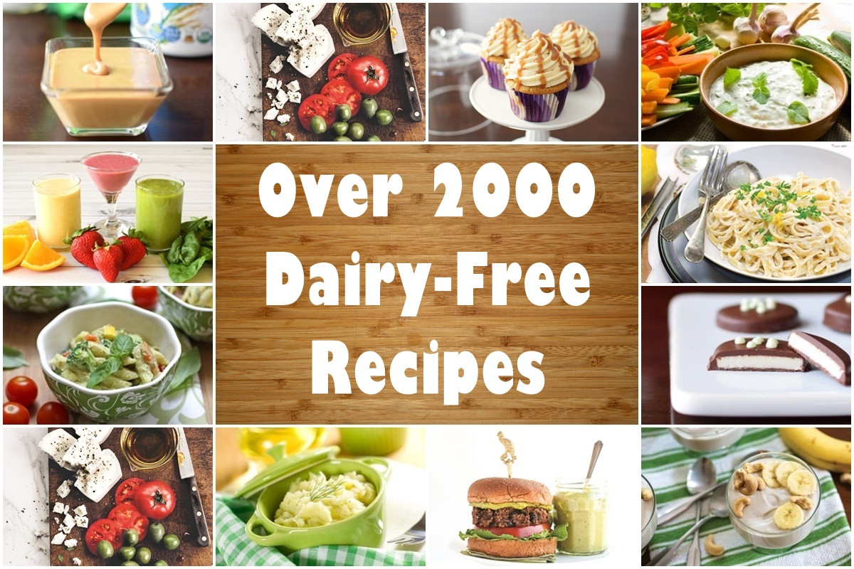 Dairy Free Recipes  Dairy Free Recipes Over 2500 Meals Desserts Snacks & More