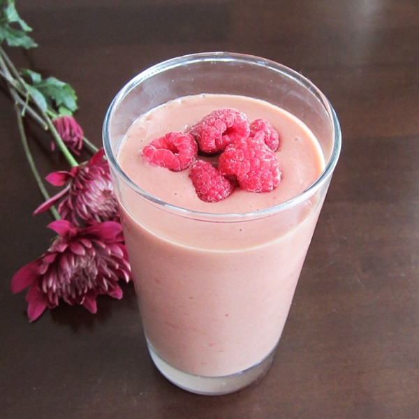 Dairy Free Smoothie Recipes  35 Healthy and Dreamy Dairy Free Smoothie Recipes Go