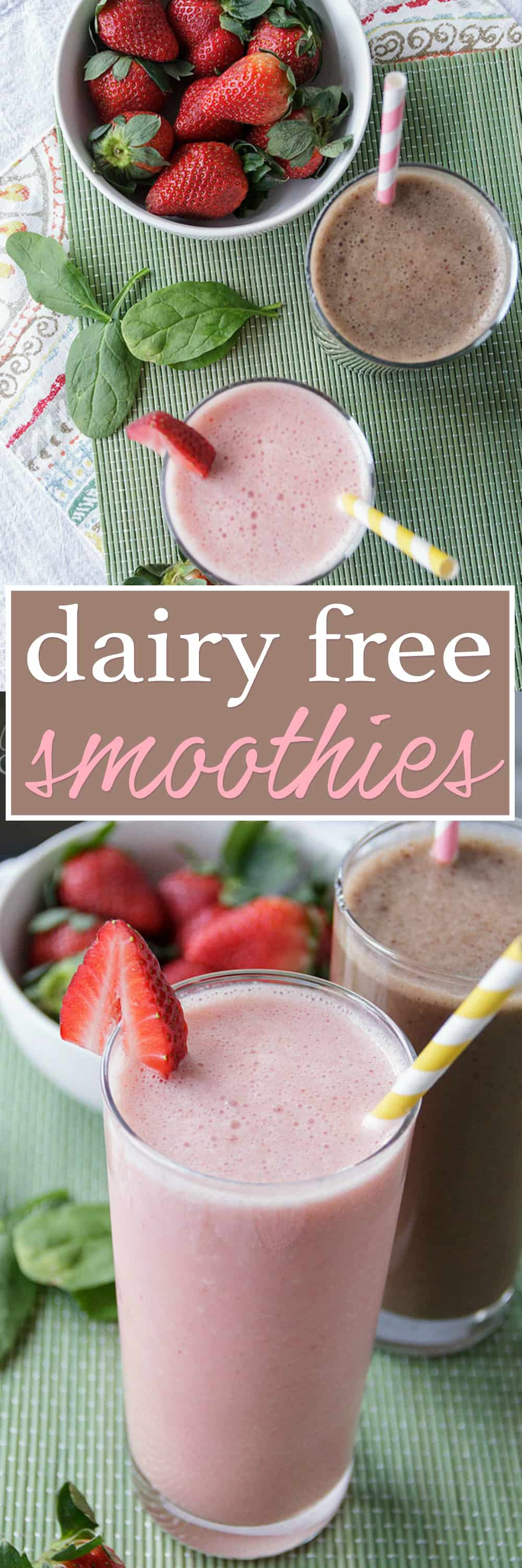 Dairy Free Smoothies  Dairy Free Smoothies vegan smoothie ideas for breakfast