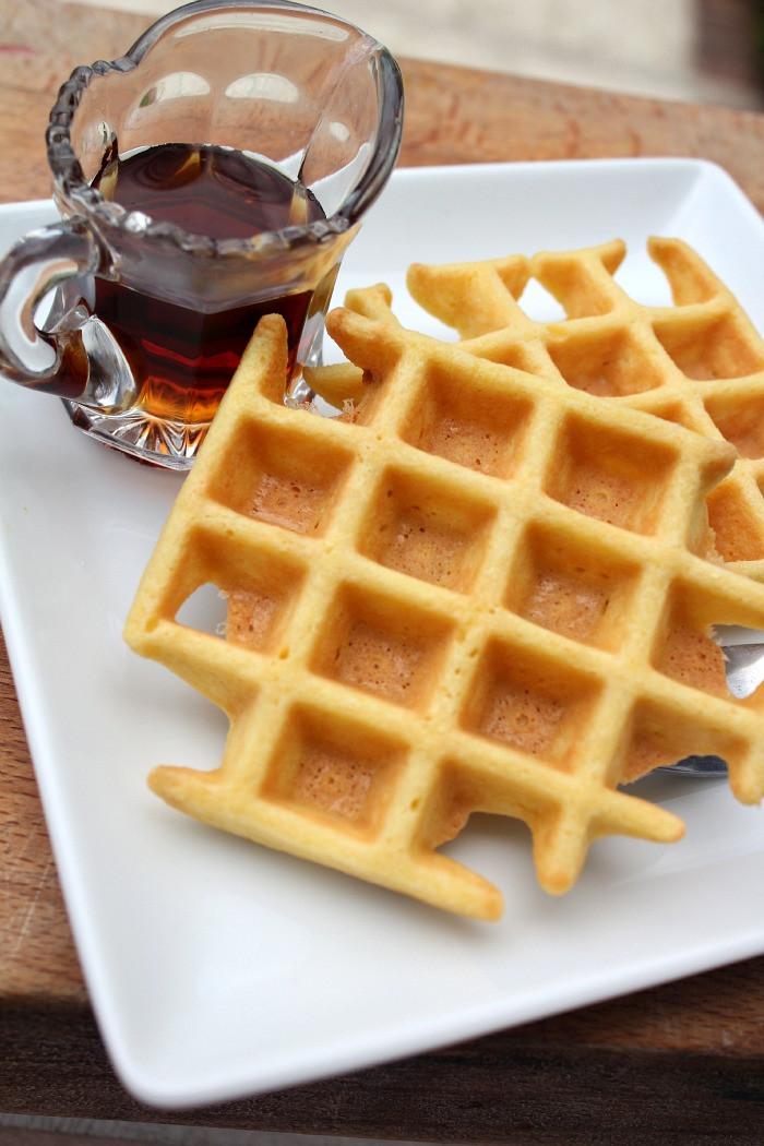 Dairy Free Waffles  Gluten Free Waffle Recipe Bravo For Paleo