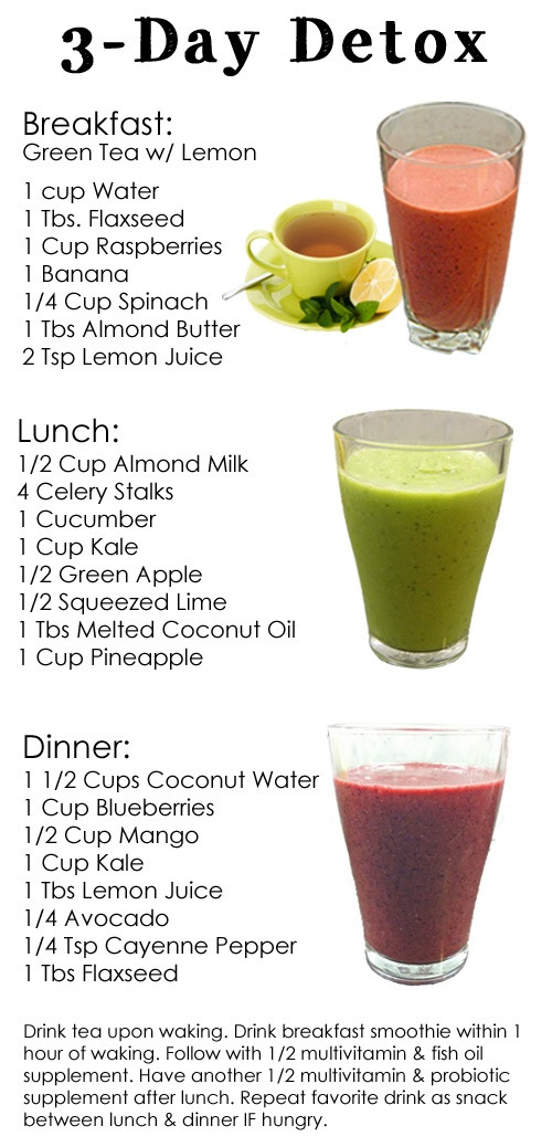 Detox Smoothie Recipes For Weight Loss  smoothie recipes for weight loss