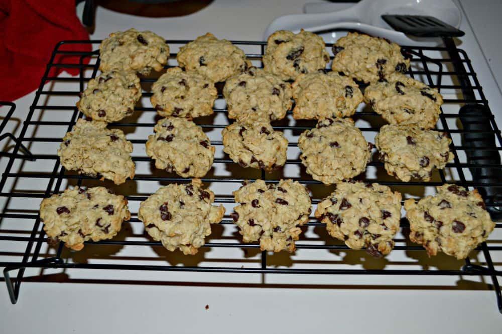 Diabetic Chocolate Chip Cookies  Chocolate Chip Cookies Review of America s Best Cookbook