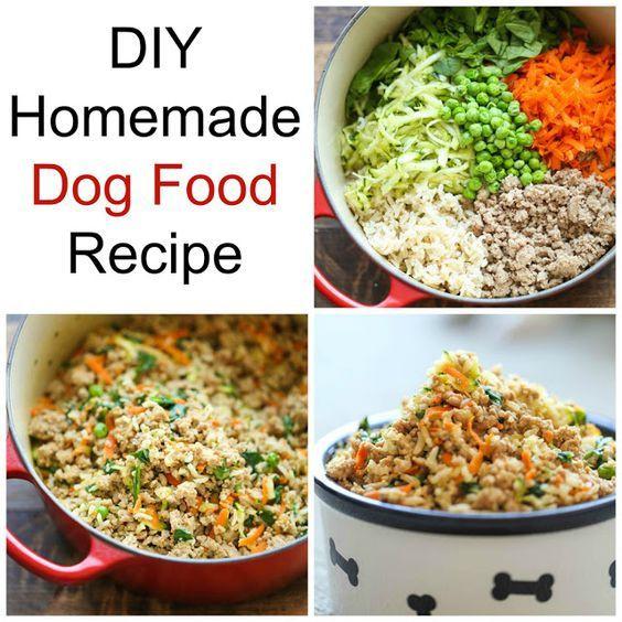 Diabetic Dog Food Recipes  The 25 best Diabetic dog food ideas on Pinterest