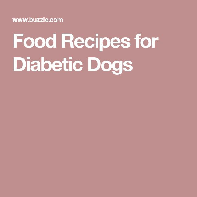 Diabetic Dog Food Recipes  127 best images about Chomedy the City Dog living in the
