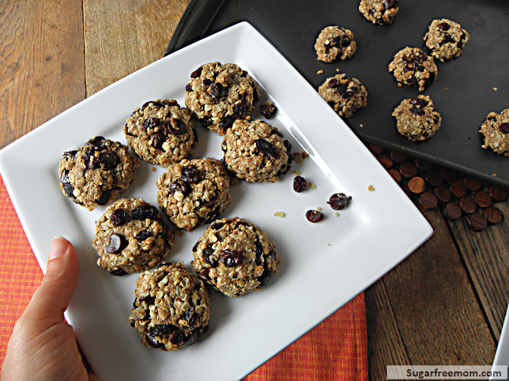 Diabetic Friendly Oatmeal Cookies  diabetic oatmeal cookies with stevia