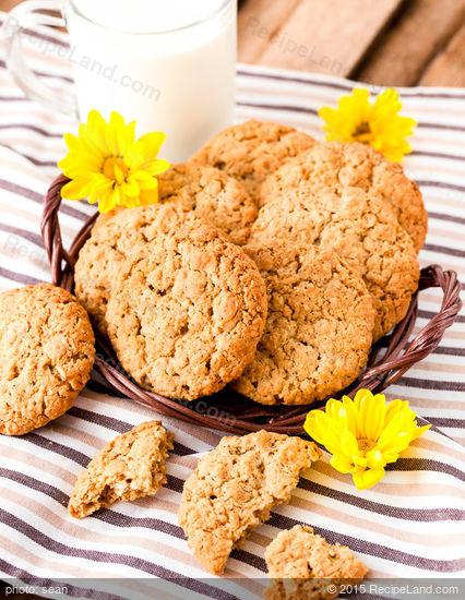 Diabetic Peanut Butter Cookie Recipes  Diabetic Oatmeal Peanut Butter Cookies Recipe