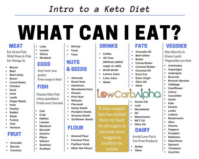 Does Keto Diet Raise Cholesterol  Introduction to Ketogenic Diet – A Simple Intro to Ketosis
