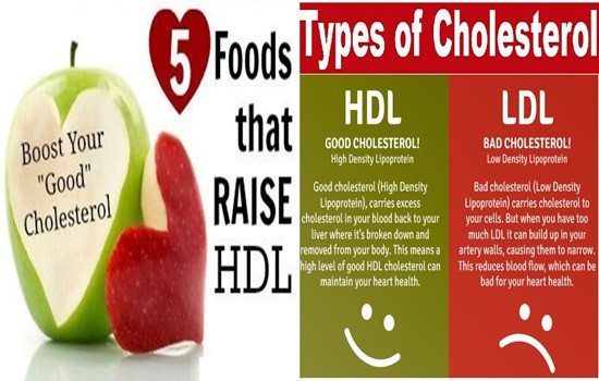 Does Keto Diet Raise Cholesterol  5 Foods To Increase Your Good Cholesterol – Health 11