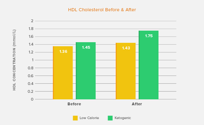 Does Keto Diet Raise Cholesterol  The Ketogenic Diet and Cholesterol