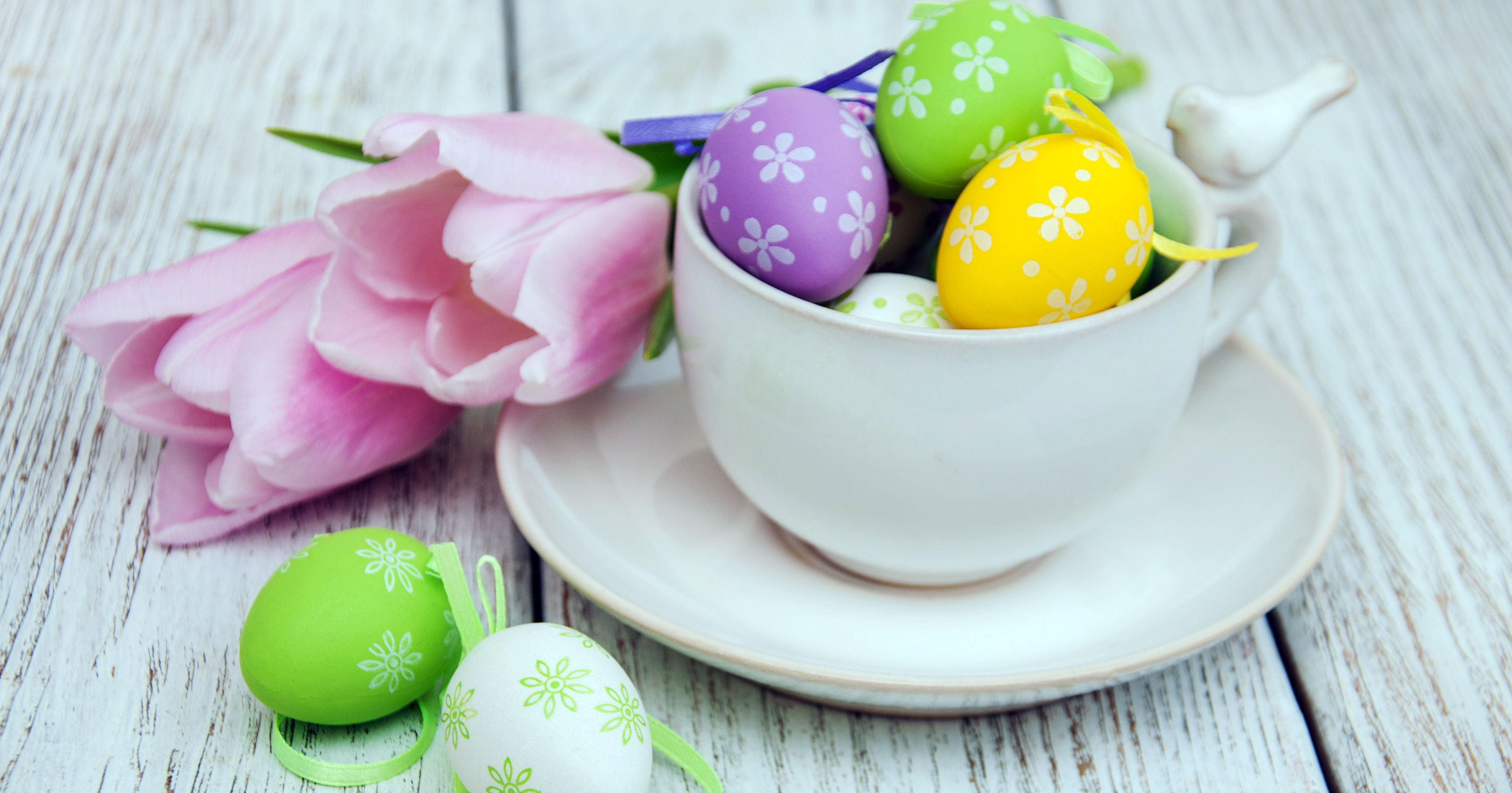 Easter Dinner Specials  Easter dining Holiday brunch and dinner specials in