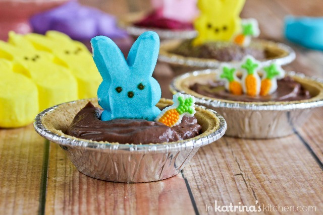 Easy Easter Desserts For Kids  Peeps Pudding S mores Pies Recipe