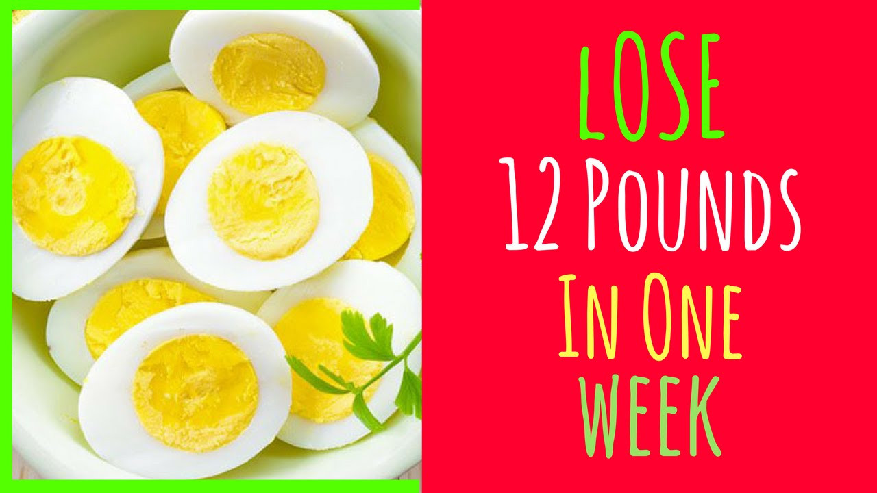 Egg Diet Recipes For Weight Loss  Egg t for weight loss HOW I LOSE 12 POUNDS IN 1 WEEK