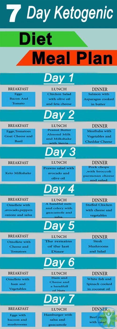 Female Keto Diet Plan Pdf  The 25 best Ketogenic t ideas on Pinterest