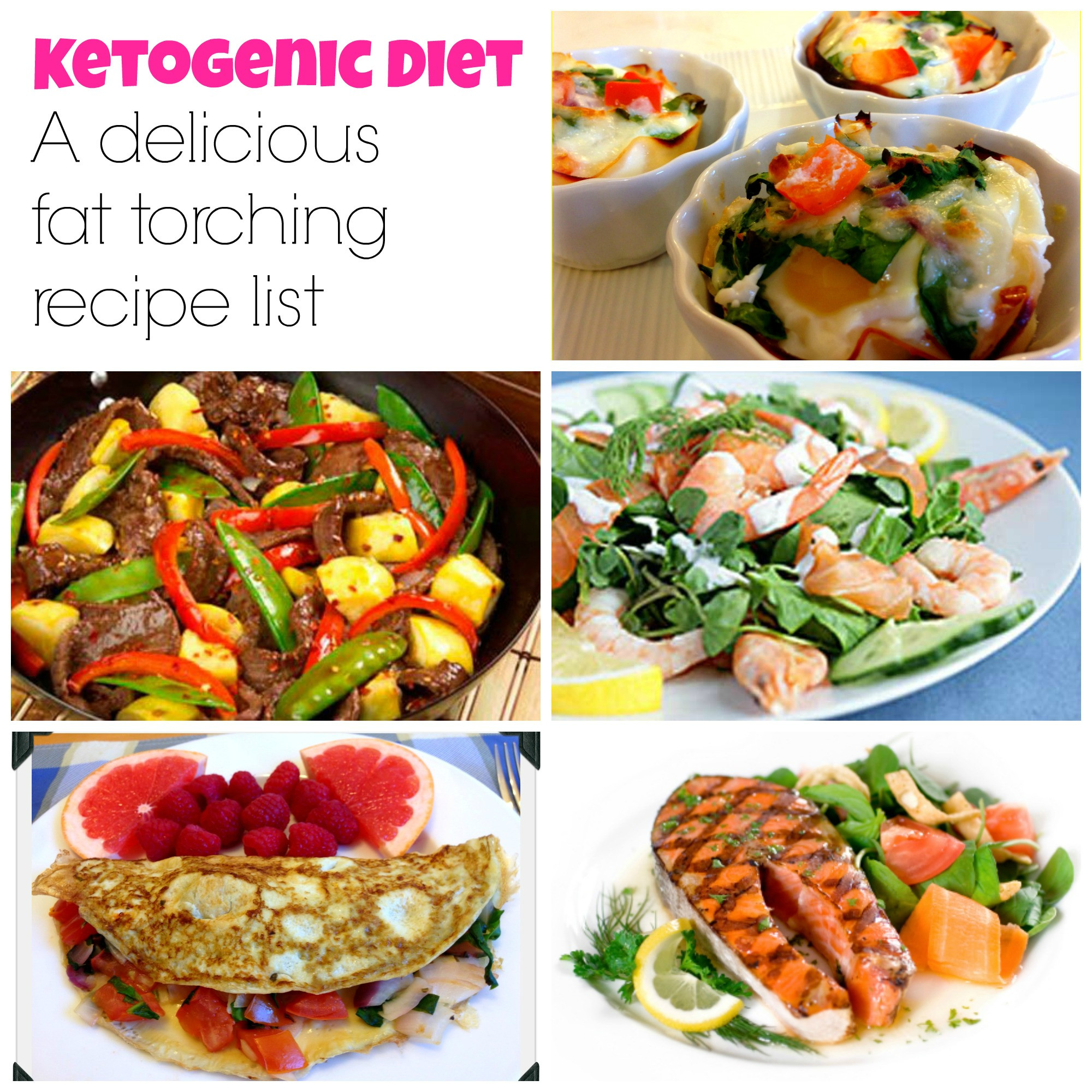 Free Keto Diet Recipes  The Best Ketogenic Diet Recipes My Dream Shape