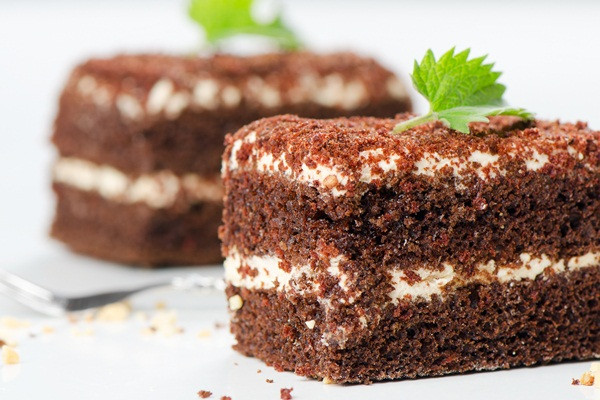Gluten And Dairy Free Cake Recipes Easy  Rich Chocolate Mayo Cake Cupcakes Recipe Dairy Free