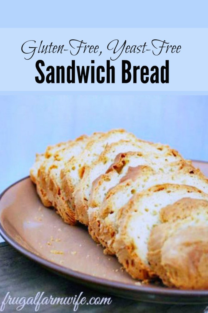 Gluten Free Bread Recipe With Yeast  25 Quick Bread Recipes No Yeast Required