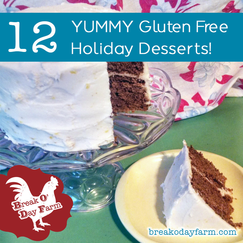 Gluten Free Christmas Desserts  12 Gluten Free Holiday Dessert Recipes