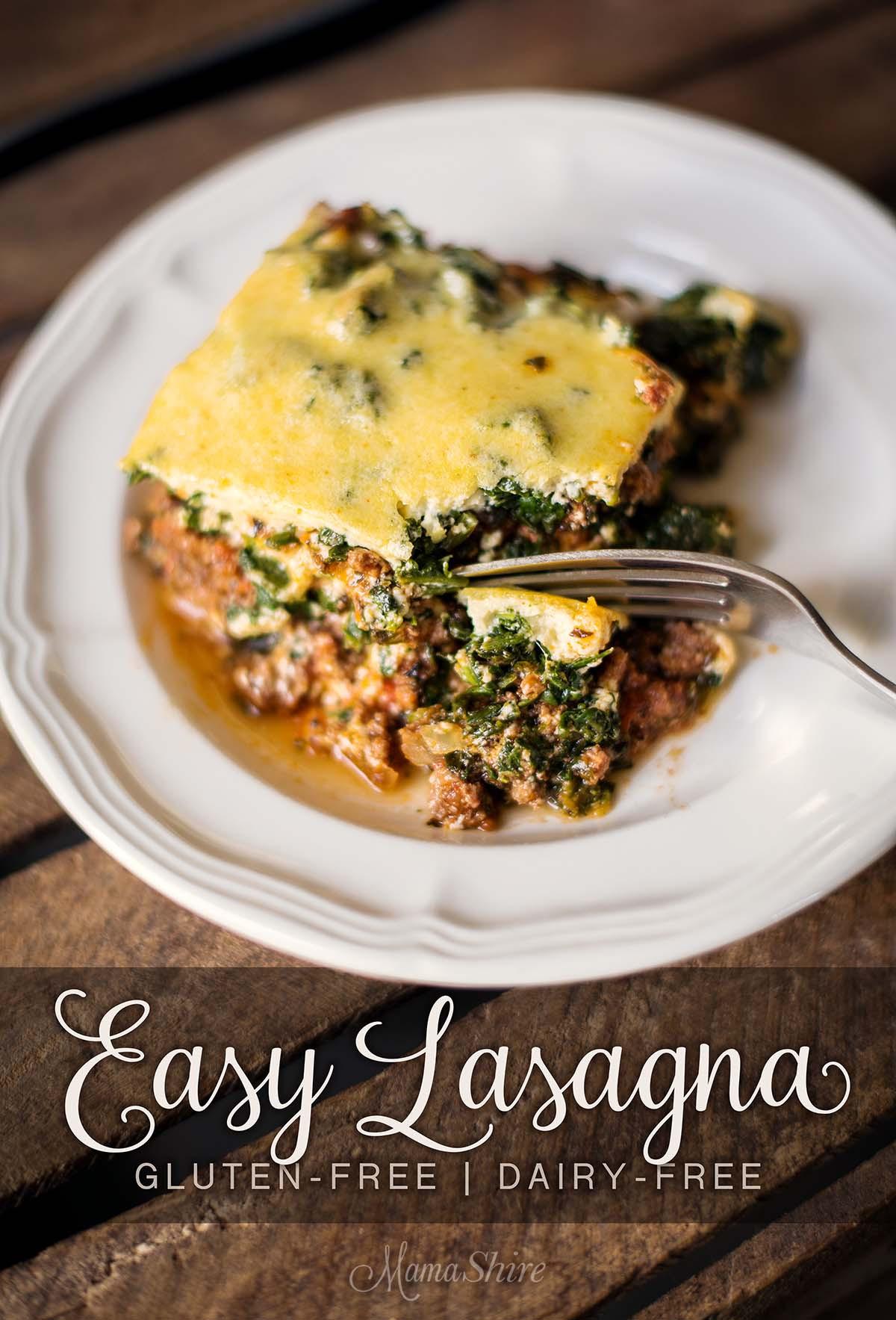 Gluten Free Dairy Free Lasagna  Easy Lasagna Gluten Free & Dairy Free MamaShireMamaShire