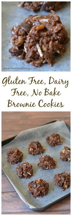 Gluten Free Dairy Free No Bake Cookies  Gluten Free No Bake Brownie Bite Cookies Fearless Dining