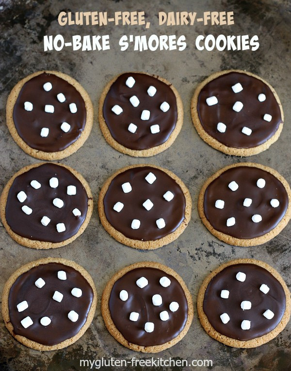 Gluten Free Dairy Free No Bake Cookies  No Bake S mores Cookies Recipe Gluten free
