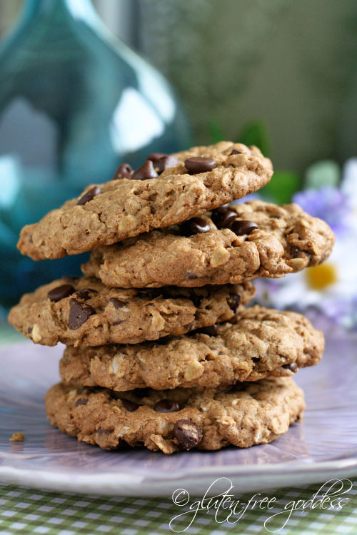 Gluten Free Dairy Free Oatmeal Cookies  Over 60 Gluten Free Oatmeal Cookie Recipes
