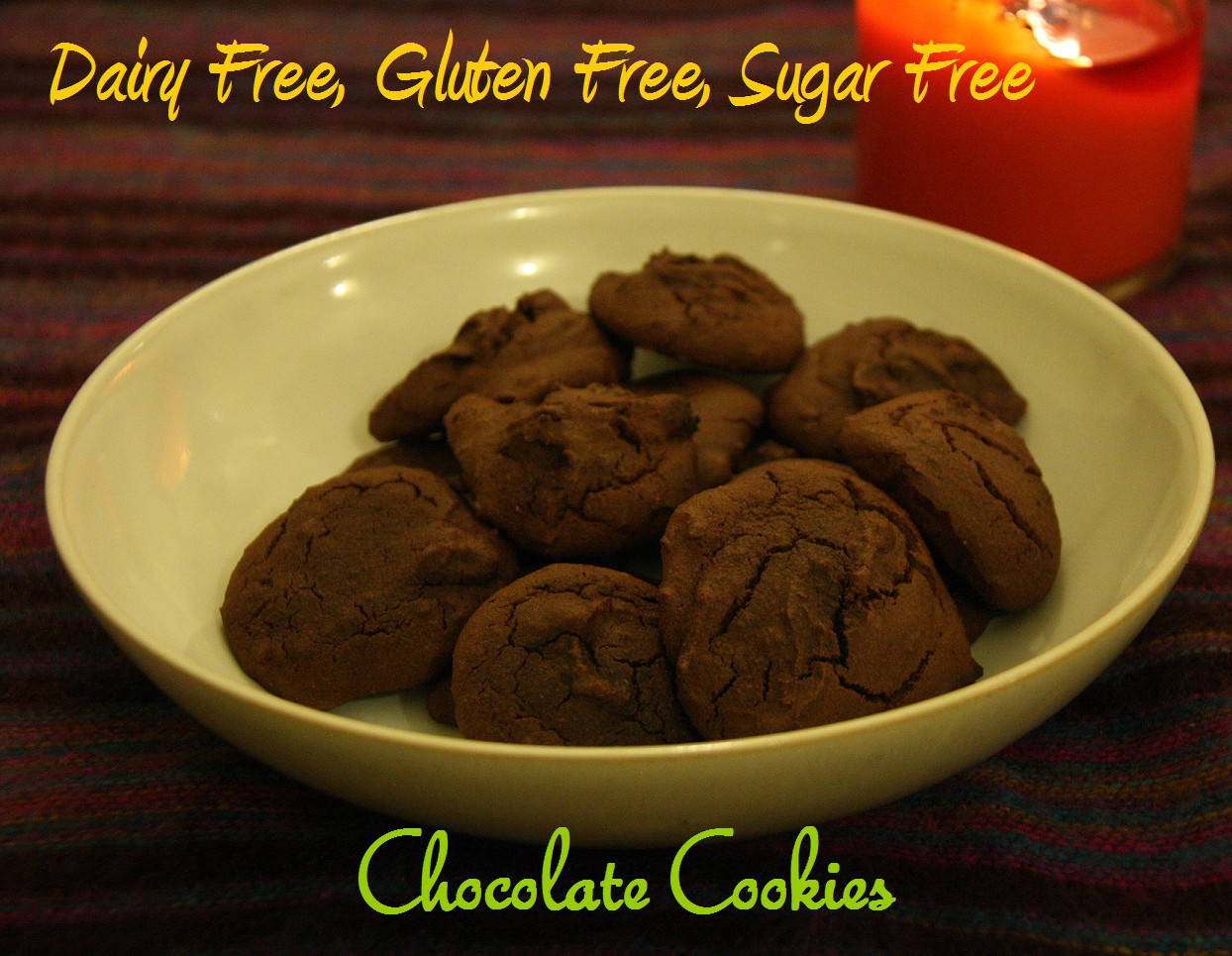 Gluten Free Dairy Free Sugar Free Cookies  AmorExplore Dairy Free Gluten Free Sugar Free Chocolate