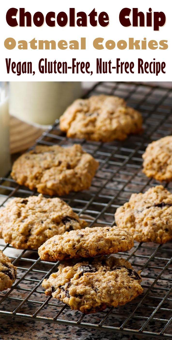Gluten Free Dairy Free Vegan Recipes  Oatmeal Chocolate Chip Cookies Recipe Vegan & Gluten Free