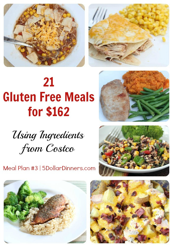 Gluten Free Dinners  How to Make 21 Gluten Free Meals for $162