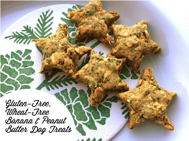 Gluten Free Dog Biscuit Recipe  Assemble Shop and Studio A Friday Recipe for your Best